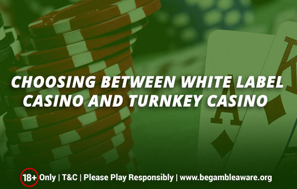 Choosing Between White Label Casino and Turnkey Casino